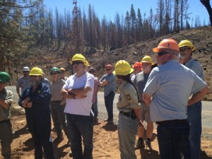 YSS and the Rim Fire